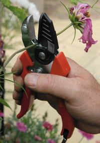 Cut and grip secateurs