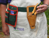Tool belt and secateur holster