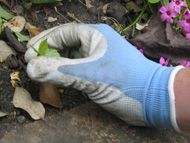 Lightweight gardening gloves
