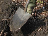 Long handle round point shovel