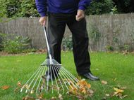 Sweeping and Raking