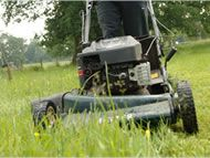 mowing and lawn maintenance