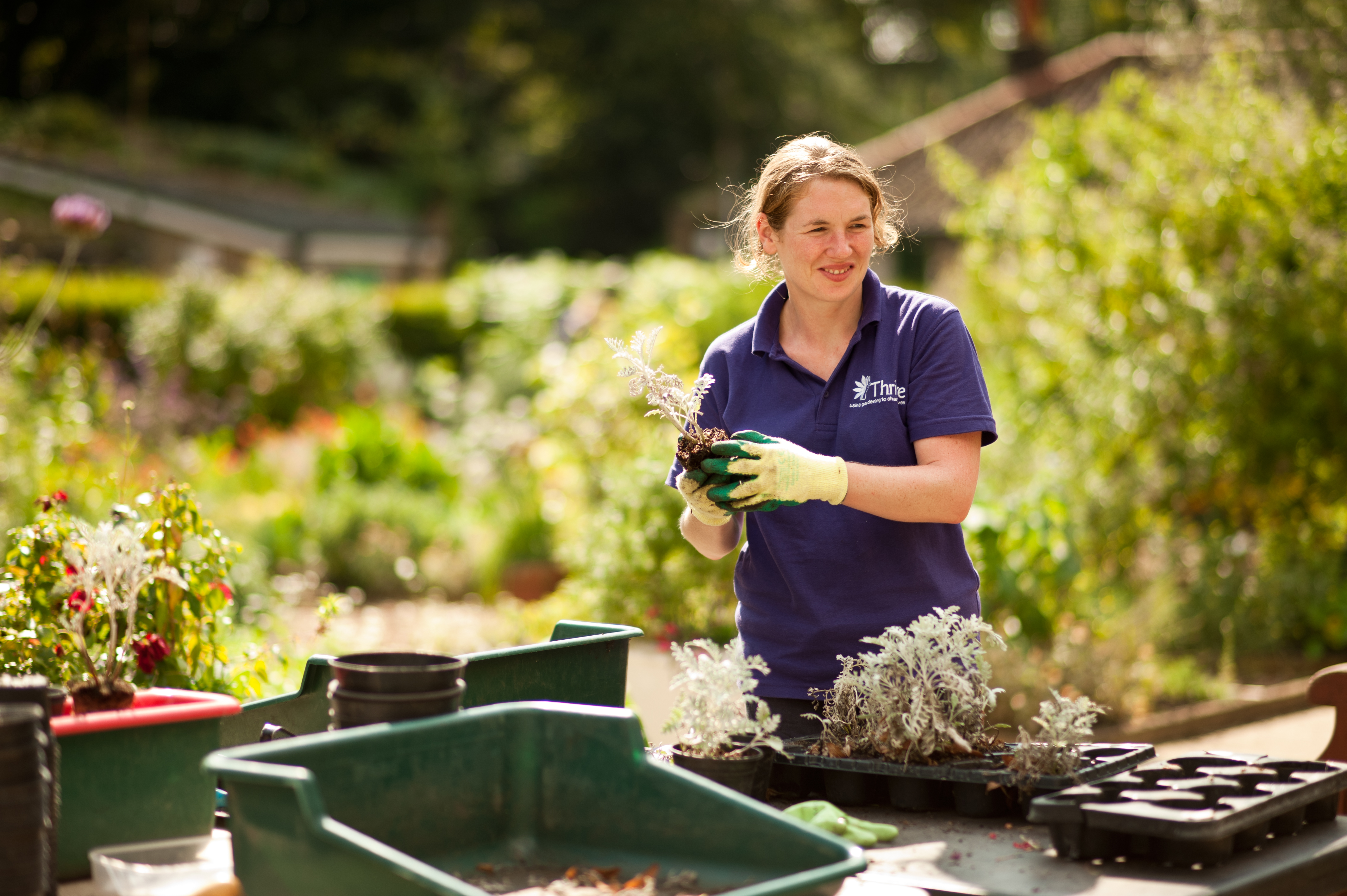 Top Tips for easier gardening